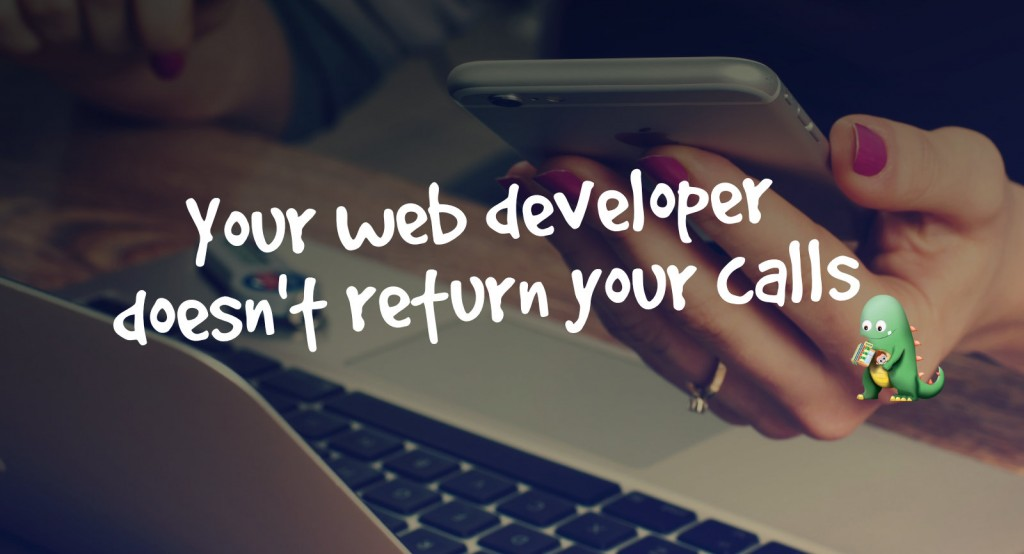Your Web Developer Doesn't Return Your Calls – Here's Why